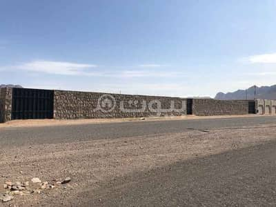 Commercial Land for Rent in Madina, Al Madinah Region - Commercial land for rent in Al Ghabah, Madina