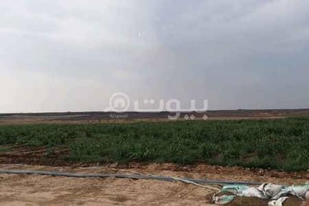 مزرعة  للايجار في جدة، المنطقة الغربية - مزرعة للإيجار على طريق المدينة المنورة، وادي بيضان شمال جدة