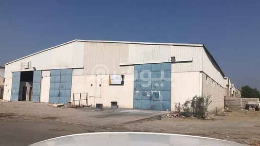 محل تجاري  للبيع في الخبر، المنطقة الشرقية - 3 ورش للبيع بصك واحد بصناعية الخبر