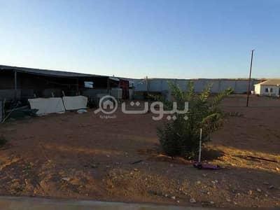 استراحة 5 غرف نوم للبيع في الرياض، منطقة الرياض - استراحة للبيع بحي بنبان، شمال الرياض