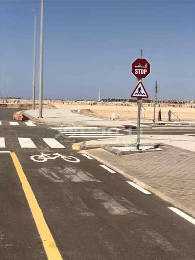 Residential Land for Sale in King Abdullah Economic City, Western Region - Residential Lands for sale in King Abdullah Economic City