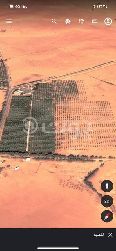 مزرعة  للبيع في عنيزة، منطقة القصيم - مزرعة للبيع في الشعيب، عنيزة