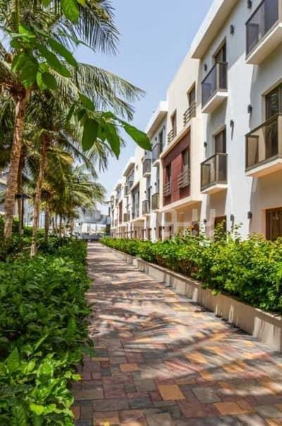فلیٹ 2 غرفة نوم للايجار في جدة، المنطقة الغربية - شقة عوائل للإيجار في كمباوند في حي الشاطئ، شمال جدة