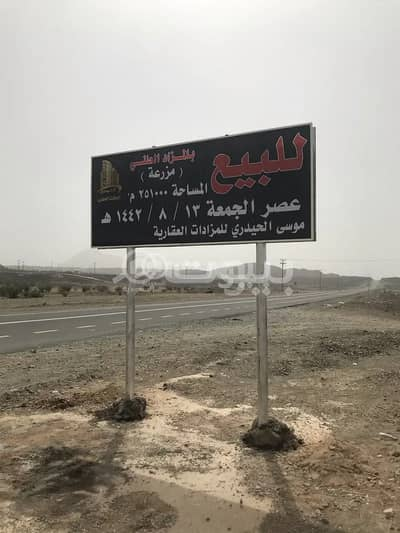 Farm for Sale in Jeddah, Western Region - Farm for sale by auction in Madinah Road, North of Jeddah