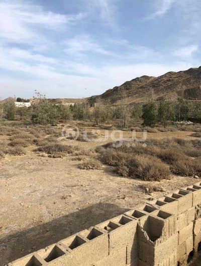 ارض تجارية  للبيع في جدة، المنطقة الغربية - أرض تجارية للبيع في بريمان(أم حبلين)، شمال جدة