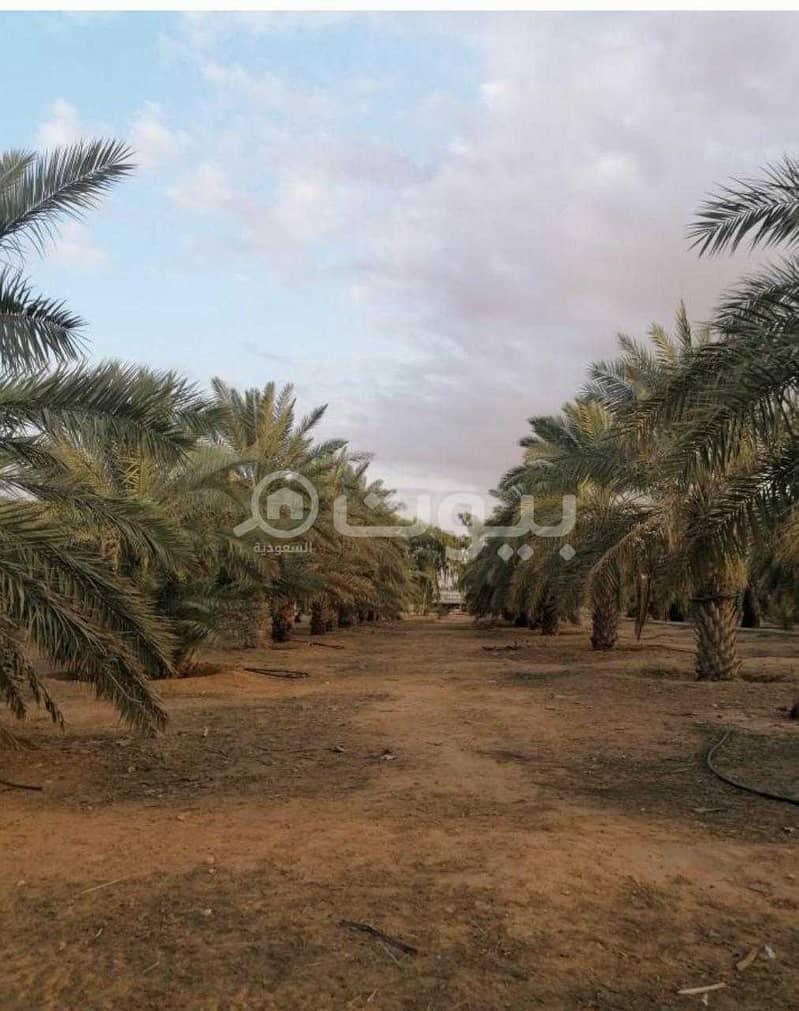 مزرعة للبيع مع ملحق خارجي في محافظة ثادق