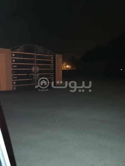Rest House for Rent in Buraydah, Al Qassim Region - istiraha for rent in al Qaa Al Barid, Qassem