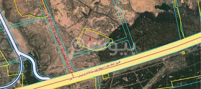 ارض تجارية  للبيع في المدينة المنورة، منطقة المدينة - أرض خام تجارية للبيع في رهط، المدينة المنورة
