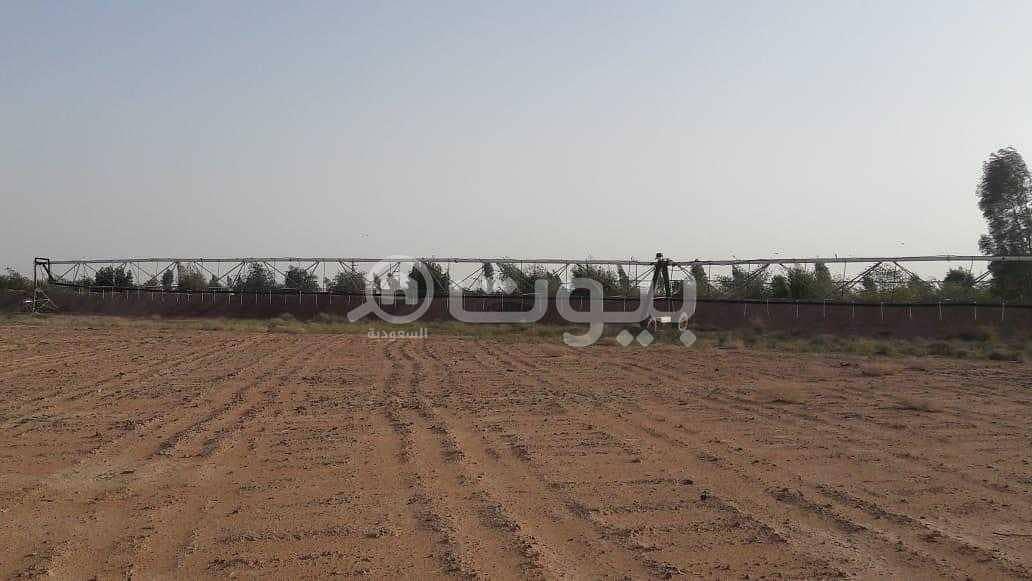 مزرعة للبيع في مخطط حمادة، المجمعة