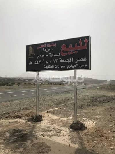 مزرعة  للبيع في جدة، المنطقة الغربية - مزرعة للبيع بالمزاد العلني في طريق المدينة المنورة، شمال جدة