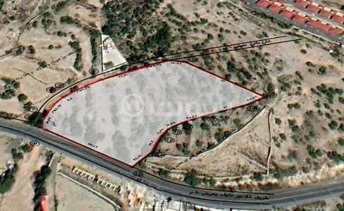 ارض تجارية  للبيع في الطائف، المنطقة الغربية - أرض تجارية للبيع في الشفا، الطائف