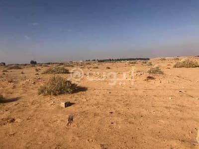 ارض زراعية  للبيع في بريدة، منطقة القصيم - ارض زراعية للبيع في بريدة، منطقة القصيم