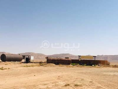 مزرعة  للبيع في الرياض، منطقة الرياض - مزرعة للبيع في القصب، شمال الرياض