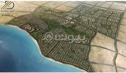 Residential Land for Sale in King Abdullah Economic City, Western Region - Special offer with 25% off Land for sale in Al Murooj, King Abdullah Economic City