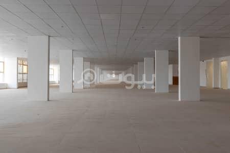 صالة عرض  للايجار في الرياض، منطقة الرياض - صالة عرض مجهزة بالكامل للإيجار في حي الملك فهد، شمال الرياض