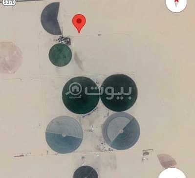 Farm for Sale in Al Duwadimi, Riyadh Region - Farm for sale in Al Duwadimi