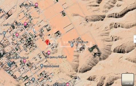 Agriculture Plot for Sale in Al Diriyah, Riyadh Region - Agriculture Plot for sale in Al Ammariyah, Al Diriyah