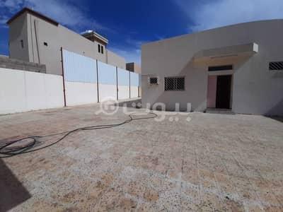 دور 4 غرف نوم للبيع في حائل، منطقة حائل - بيت شعبي للبيع في حي صديان الشرقي، حائل