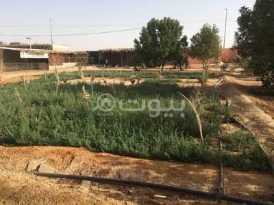 استراحة  للبيع في ضرما، منطقة الرياض - للبيع إستراحة في ضرما، منطقة الرياض