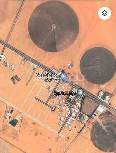 ارض زراعية  للبيع في المزاحمية، منطقة الرياض - ارض زراعية للبيع في الجافورة المزاحمية | منطقة الرياض