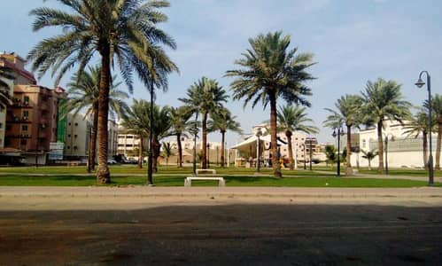 3 Bedroom Apartment for Rent in Riyadh, Riyadh Region - شقة للإيجار