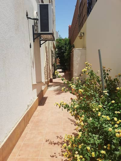 عمارة تجارية  للايجار في جدة، المنطقة الغربية - عمارة تجارية للإيجار بالمحمدية، جدة