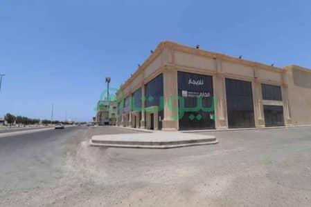 Showroom for Rent in Jeddah, Western Region - Two Showrooms | 1285 SQM for rent in Al Lulu, North Jeddah