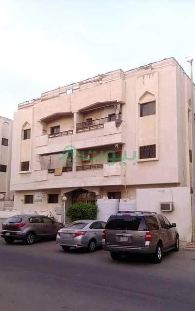 شقة 2 غرفة نوم للايجار في جدة، المنطقة الغربية - شقة للإيجار في الصفا، شمال جدة