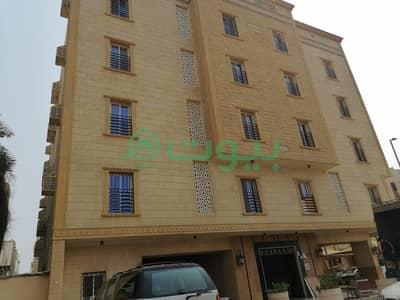 فلیٹ 3 غرف نوم للايجار في جدة، المنطقة الغربية - شقة للإيجار بحي الصفا، شمال جدة